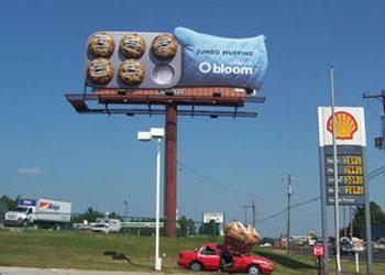 Muffins_Bloom.jpg